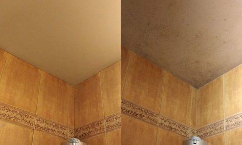 odgrzybianie łazienki